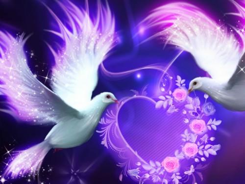 3 39378 beautiful wallpaper images for mobile beautiful love wallpaper